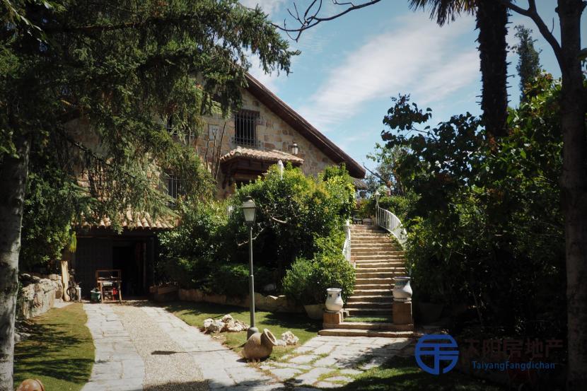 出售位于Torrelodones (马德里省)市外的别墅