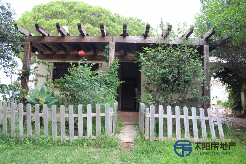 位于Pinar de los Franceses的伟大财产