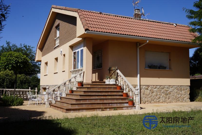 出售位于Valdetorres De Jarama (马德里省)市外的别墅