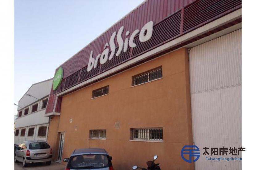 工业建筑,在San Fernando土地,(Cadiz)