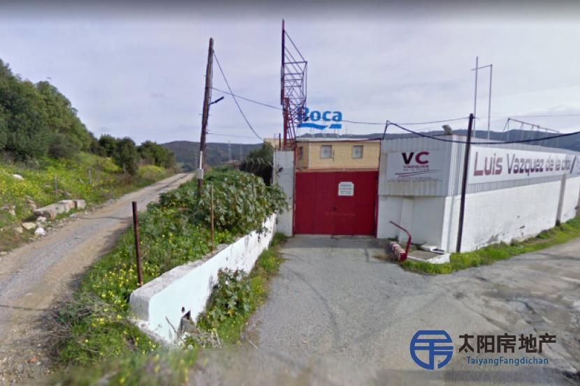 圣罗克(加的斯)的工业建...