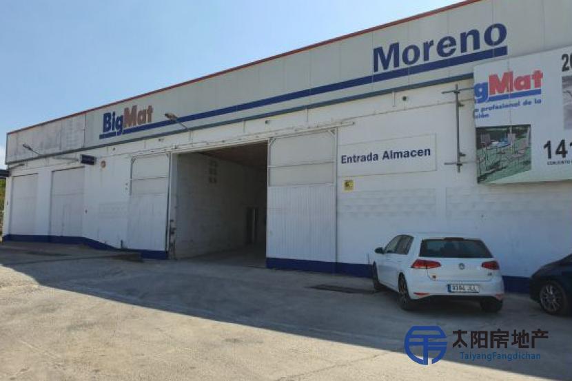 在加的斯省的Barbate市出售有土地的工业仓库