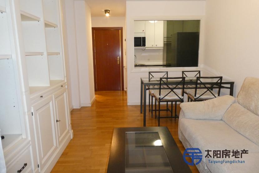 出租位于Madrid (马德里省)市外的公寓