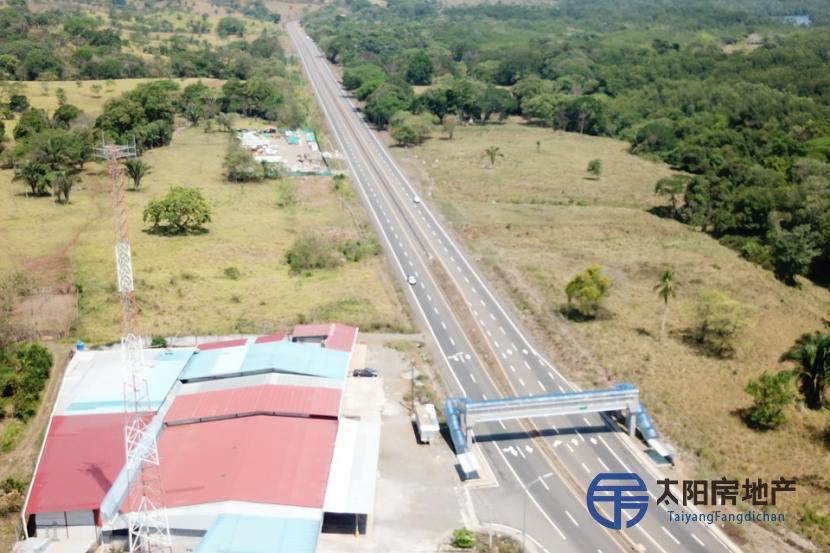 工业用地,占地26,700平方米,在巴拿马,就在PANAMERICAN高速公路上
