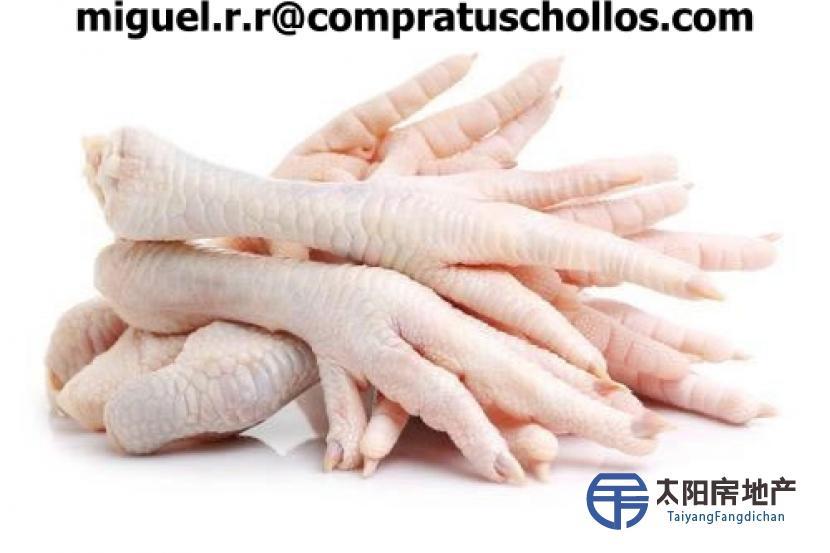 SALE Frozen Chicken Paws Frozen Chicken Feet Sale CIF CHINA