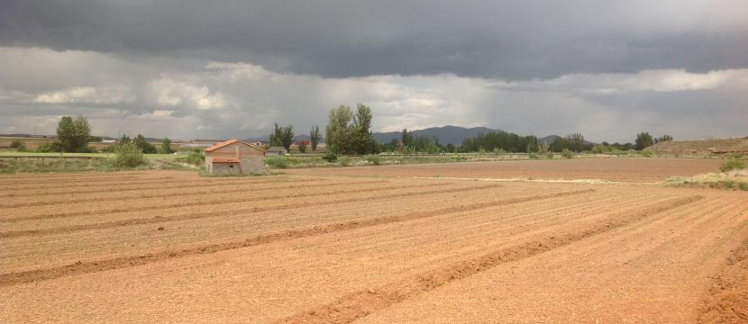EXPLOTACION AGRICOLA CON VIVIENDA Y HUERTO PARA HORTALIZAS Y OBTENCION DE RESIDENCIA EN ESPAÑA