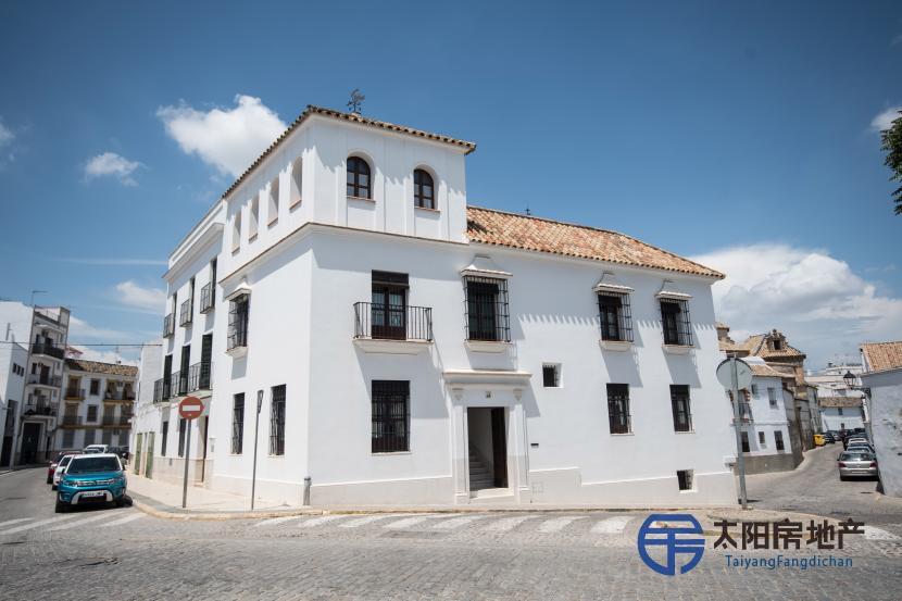 出售位于Ecija (塞维利亚省)市中心的独立房子