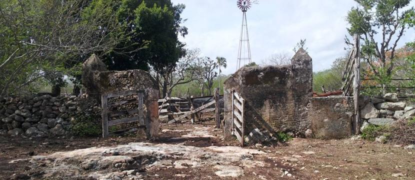 166 HECTAREAS, CACALCHEN, YUCATAN, MEXICO