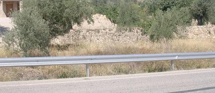 Lote de viviendas y terreno  con olivos en  producción