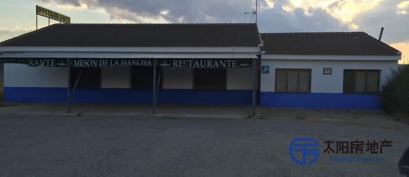 La Mancha的介子...