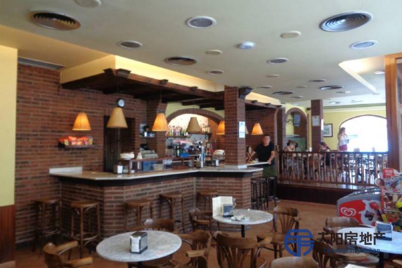 Vivaldi咖啡馆,著名并优雅的