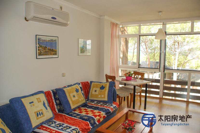 销售位于San Martin De Valdeiglesias (马德里省)的单身公寓